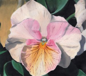 'Flower', an artwork and oil painting of a flower in the style of photorealism. Lowbrow art for sale by Melbourne artist Ana Hanson